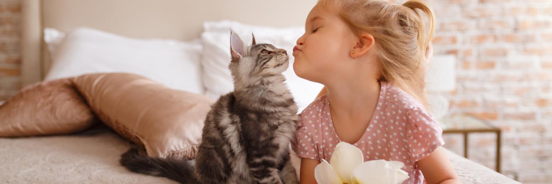 Pet Insurance Vermont