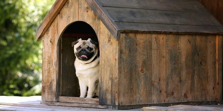 Homeowners Insurance Williston VT